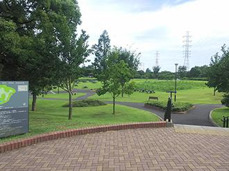 印西市北総花の丘公園